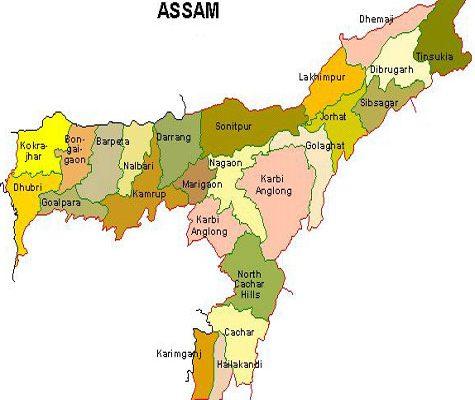 assam map tbg